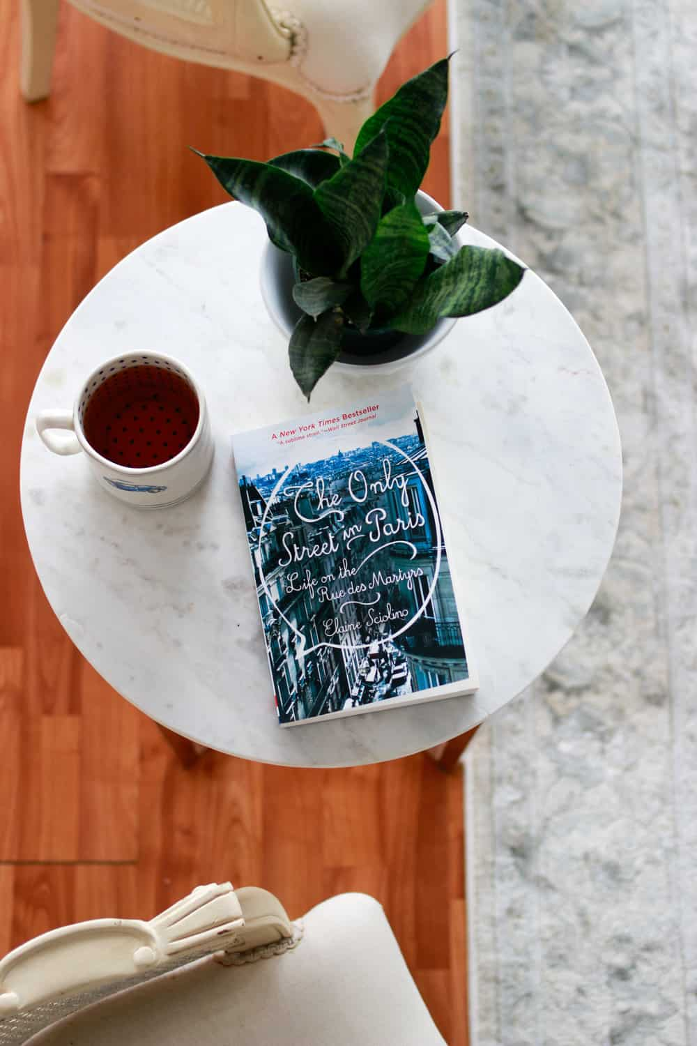 """Book Club Suggestion September: """"The Only Street in Paris"""""""