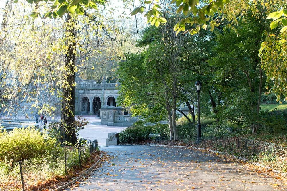 Paris meets NYC : Central Park Autumn Stroll