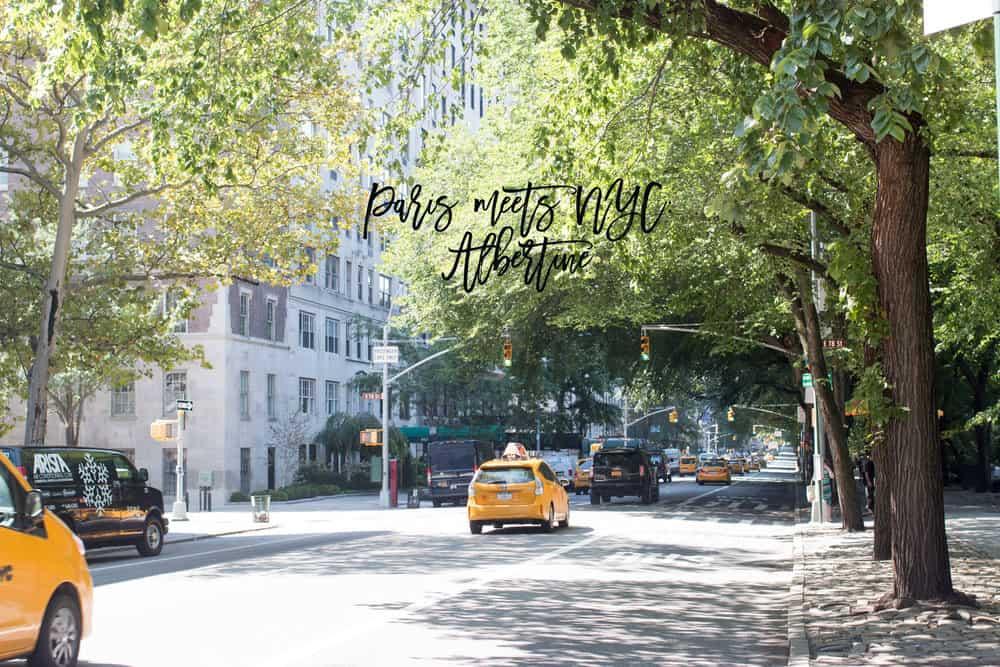 Paris Meets NYC : Albertine Book Store