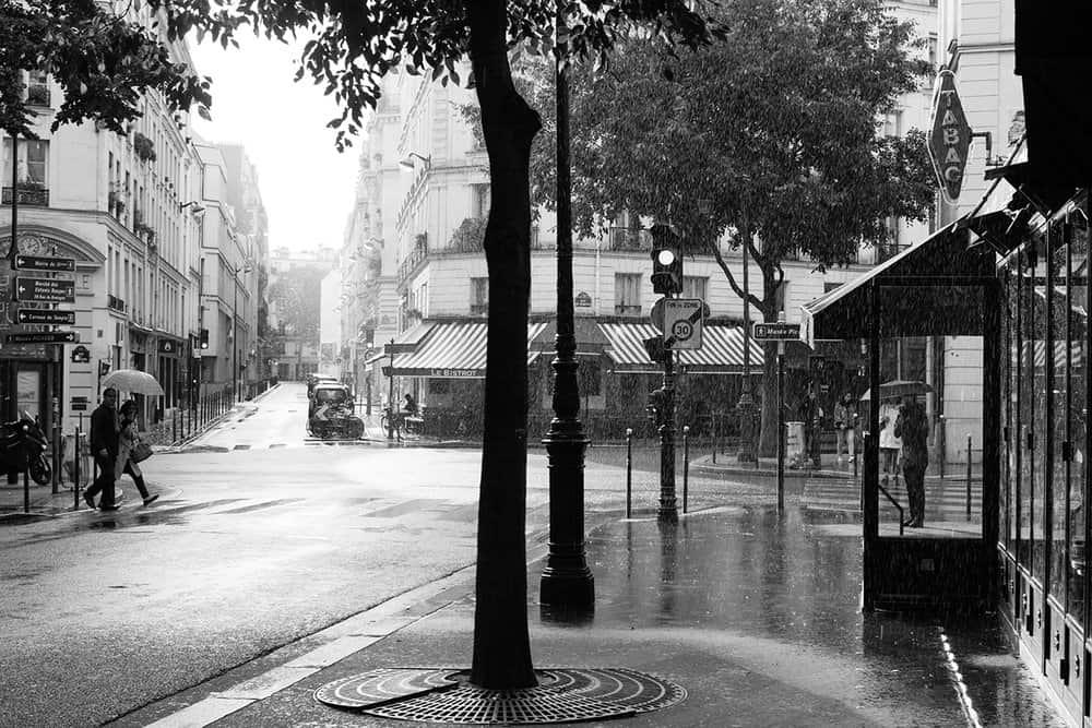 paris in the rain by everyday parisian