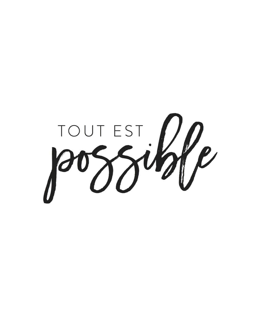 all is possible tout est possible by rebecca plotnick