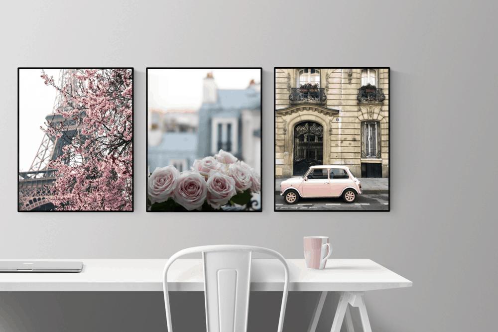 paris pink set everyday parisian rebecca plotnick