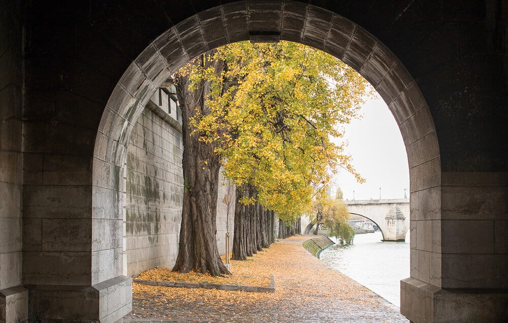 Shop Fall on The Seine Print Here