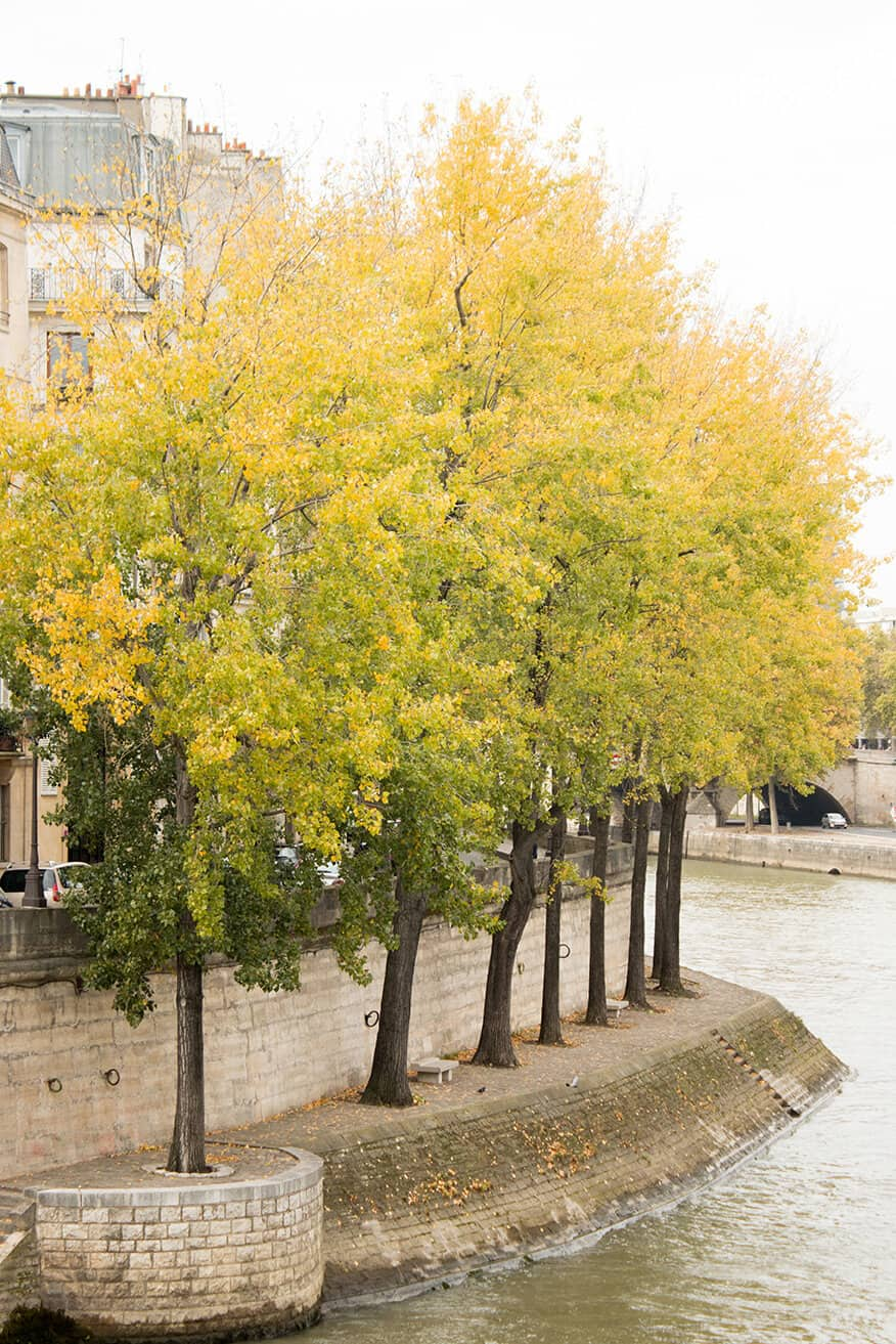 Shop Fall Stroll on the Seine Print Here