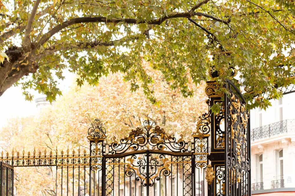 Shop Fall in Parc Monceau Print Here