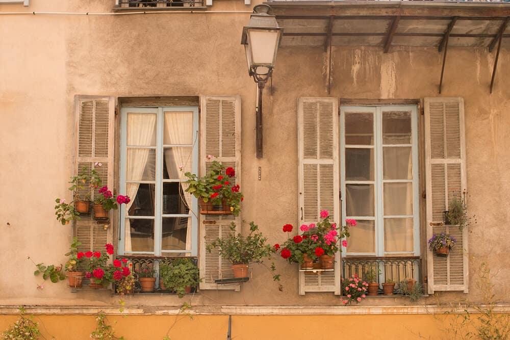 window boxes in old nice france rebecca plotnick