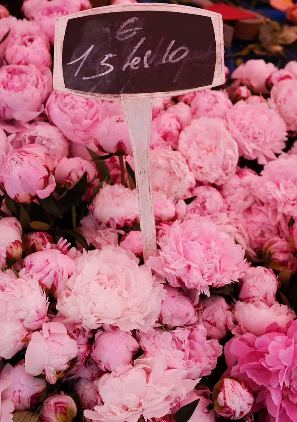 Shop Pink Peonies at the Paris Market Here