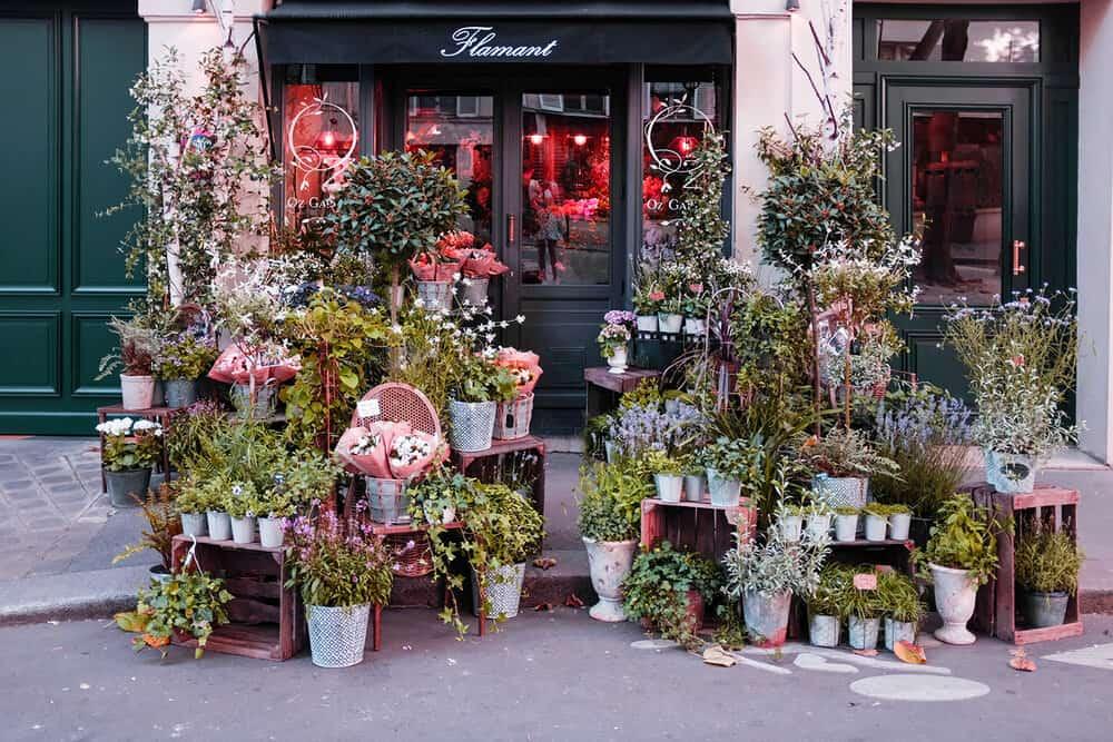Shop Flower Shop on The Left Bank Here