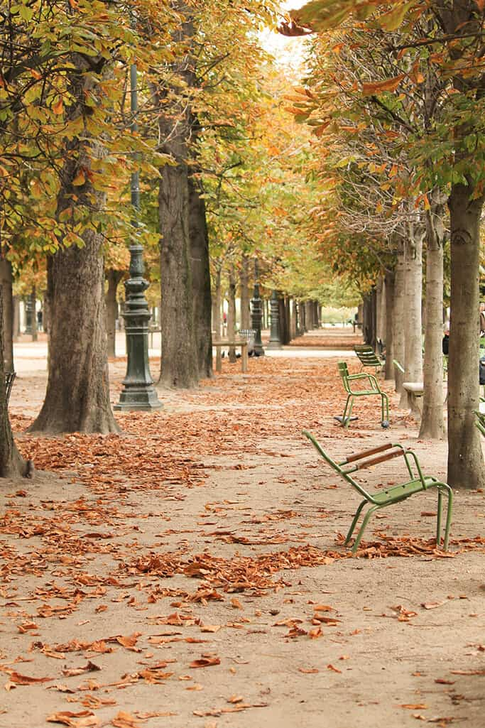 Shop Fall Tuileries in Paris Here