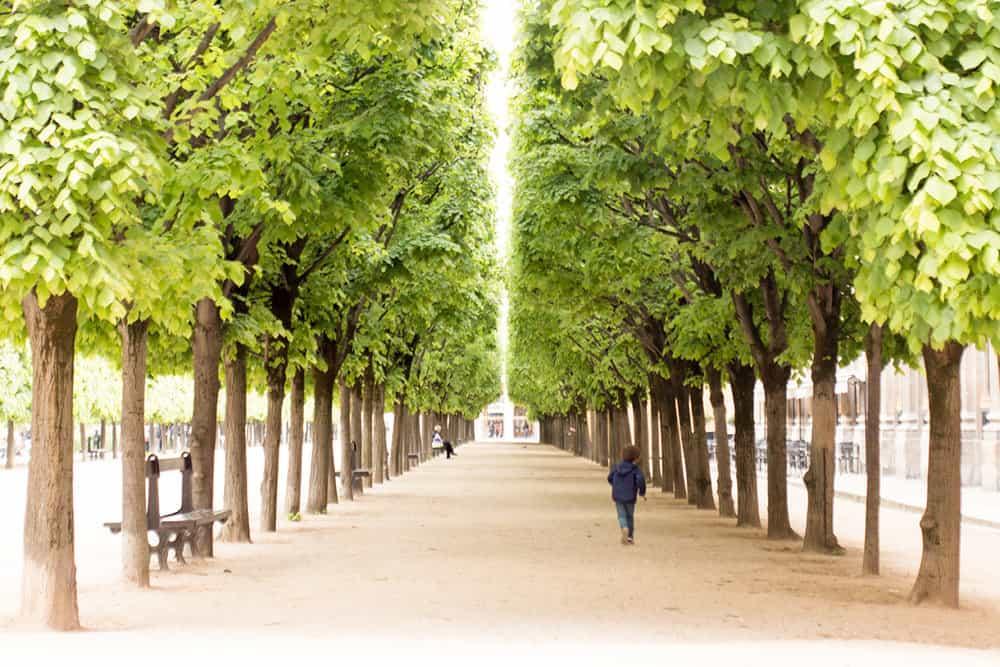 Buy Stroll Through Palais Royal Print Here