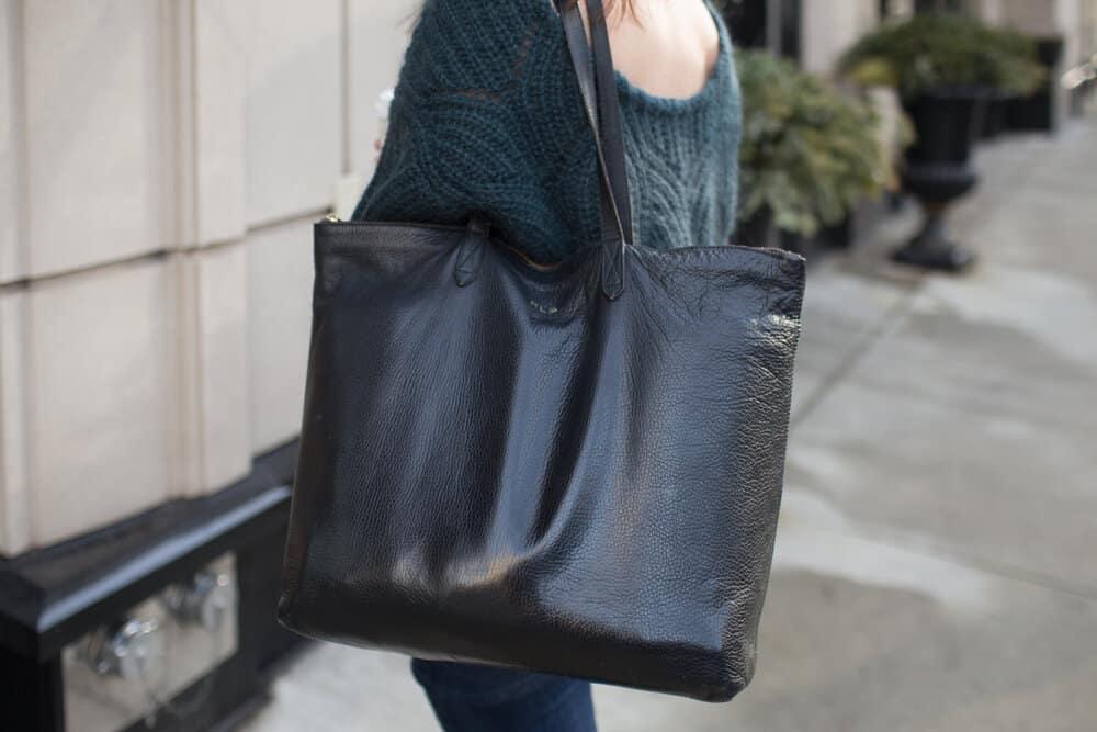 cuyana top zip bag
