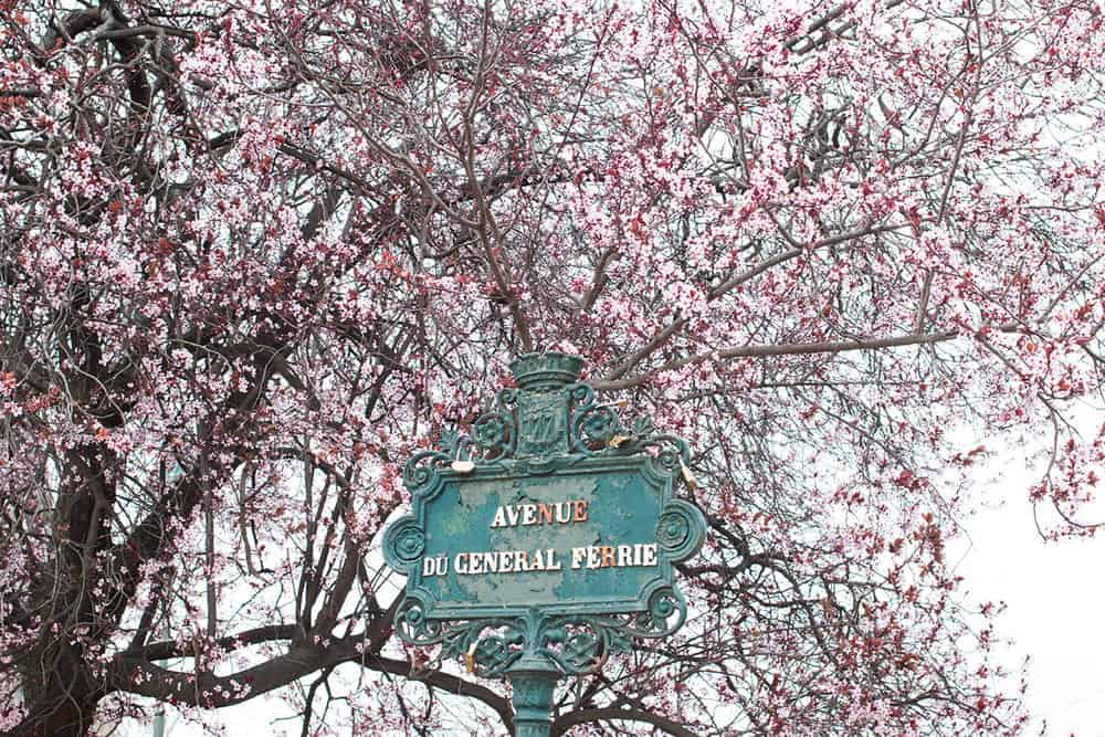 Shop Spring on the Champs de Mars Here