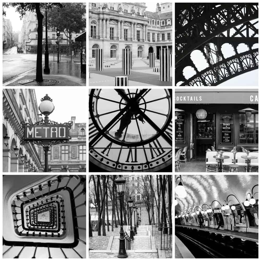 paris in black and white rebecca plotnick