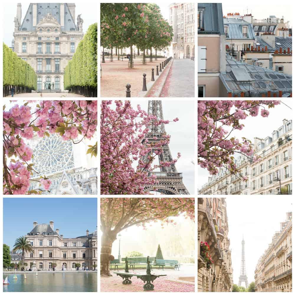 paris in the spring by rebecca plotnick