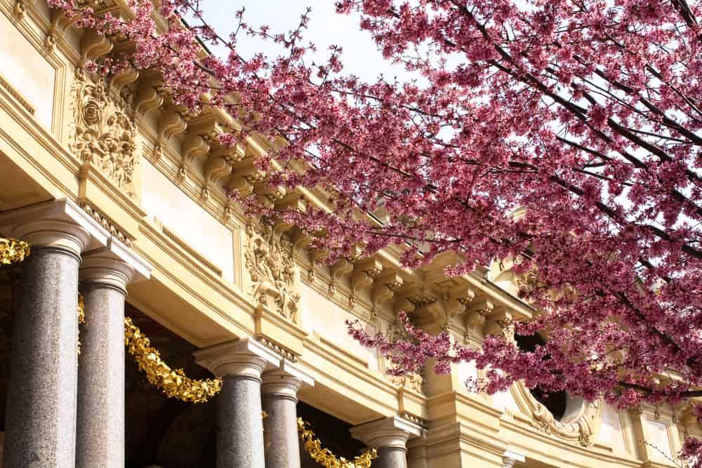 petit palais paris france where to enjoy a café at Parisian museums