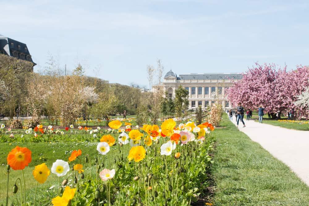 jardin des plantes paris france