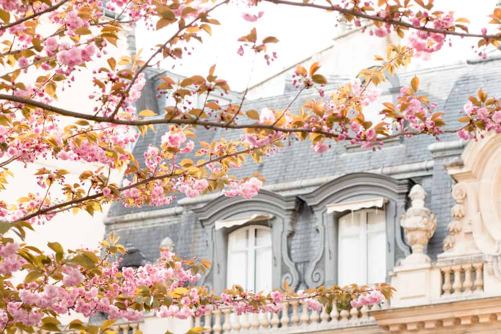 Parc Monceau in Bloom