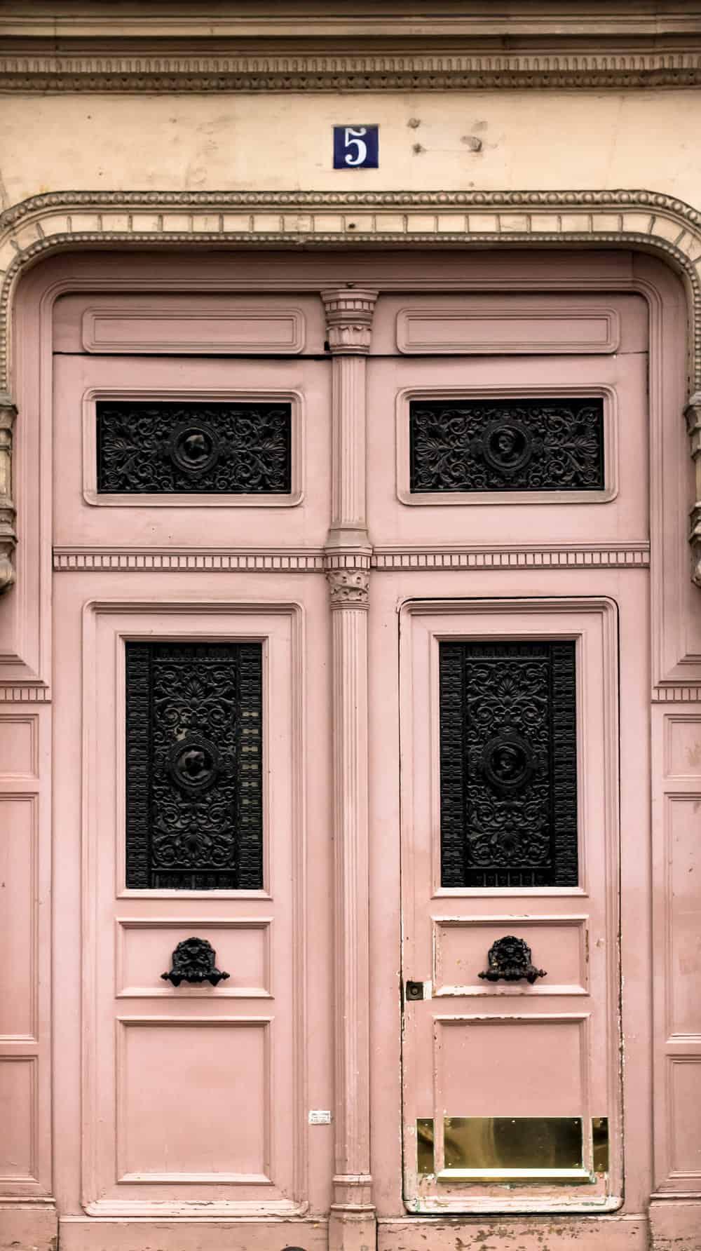 Pink Door in Paris 16x20