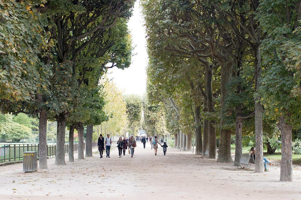 Jardin des Plantes Latin Quarter Rebecca Plotnick