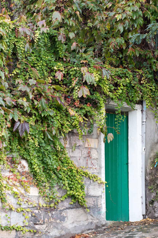 Montmartre Autumn Paris, France @rebeccaplotnick