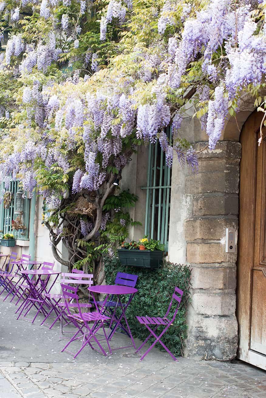 Shop Purple Wisteria in Paris Print Here