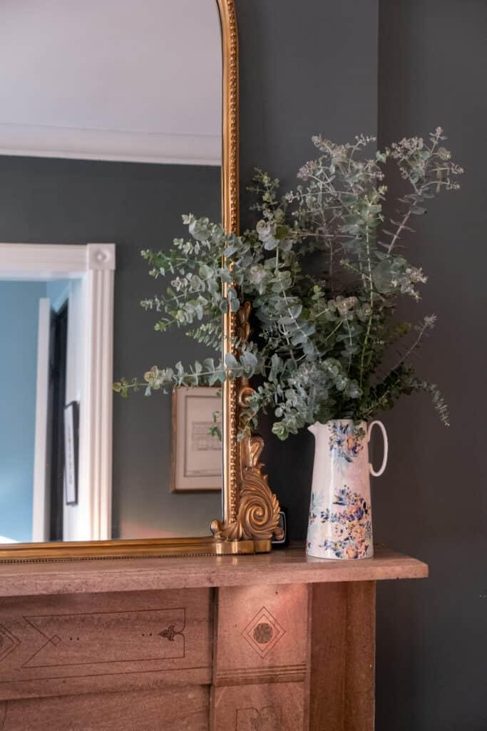 Eucalyptus or Hydrangeas plants
